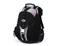 Targus Deluxe Sport Computer Backpack Review